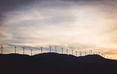 Quali alternative per il mercato elettrico?