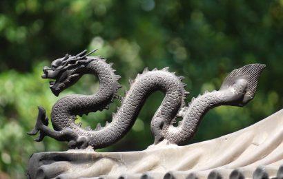 Cina: Andata e Ritorno