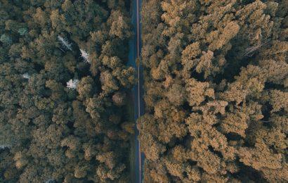 #Kyoto-Parigi. Qual è la strada più sicura?