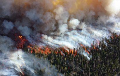 Degrado ambientale: futuro casus belli tra Stati?