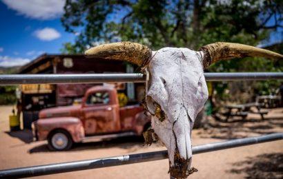 Texas: non c'è sovranità nella solitudine (energetica)